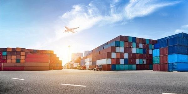 Lojistik/Sevkiyat/Ticaret Yönetimi